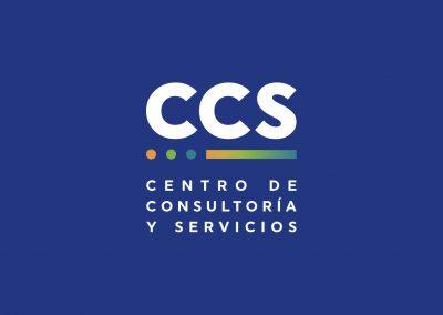 Centro de Consultoría y Servicios